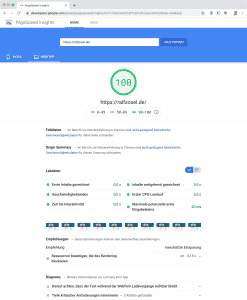 Screenshot PageSpeed Insights